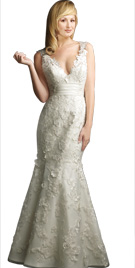Dazzling Deep V neckline Wedding Dress | Wedding Dresses