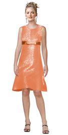Semi-fitted Dress Is Perfect For Your Formal And Holiday Event