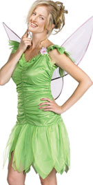The Halloween Fairy Costume